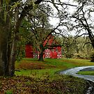 Like A Dream ~Old Red Barn ~ by Charles & Patricia   Harkins ~ Picture Oregon