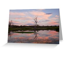 Wonga Wetlands Sunset Greeting Card