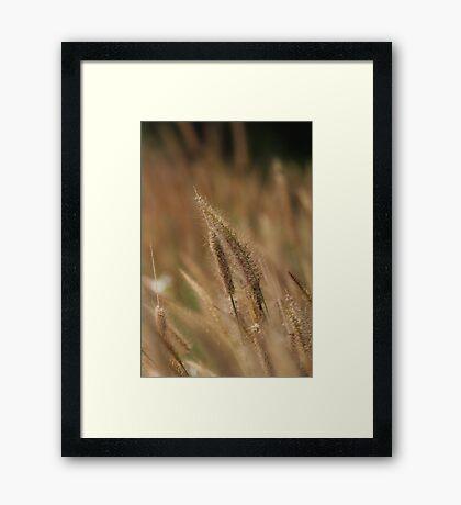 I love Grass. Framed Print