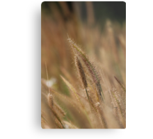 I love Grass. Metal Print
