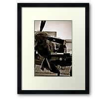 Flight check Framed Print