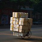 Boxes on a bicycle by sloweater