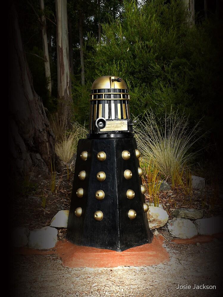 Dalek Letter Box by Josie Jackson