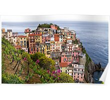Manarola village and vineyard in Cinque terre area in Italy. Poster