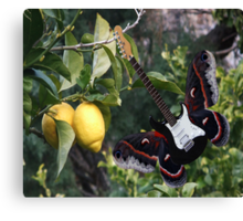 Lemons For U2  Canvas Print