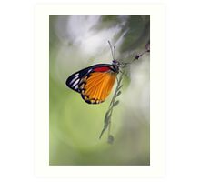 The Butterfly Effect. Art Print