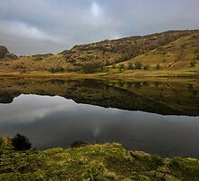 Reflective Blea Tarn  by John Hare