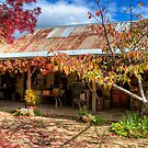 Autumn at the Cottage by smylie
