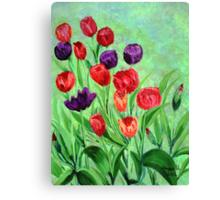 Tulips in the garden Canvas Print