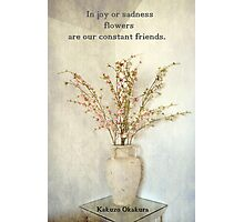 Our Constant Friends Photographic Print
