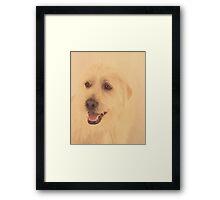Parker ~ Framed Print