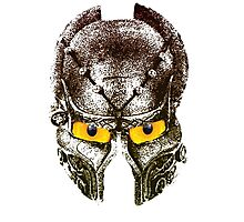 Viking helmet Photographic Print