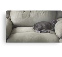 The Tiny Queen Of The Big Chair Metal Print