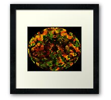 Reflections in the Eye of Pleasure Framed Print