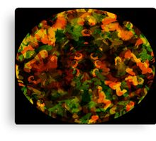 Reflections in the Eye of Pleasure Canvas Print