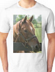 Creator 1986-2015 - Old Friends Unisex T-Shirt