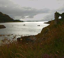 Castle ruins by Jonathan Wicks