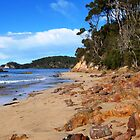 Denhams Beach, New South Wales by Trish Meyer