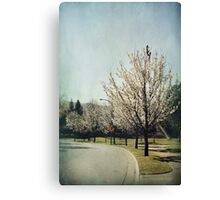 Streets Lined With Spring Canvas Print