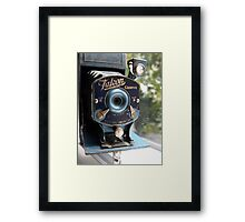 Falcon Camera Framed Print
