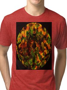Reflections in the Eye of Pleasure Tri-blend T-Shirt