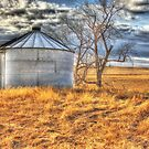 North Dakota Ghost Town leftovers by Debbie Roelle