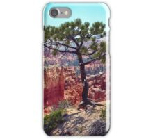 Canyon View iPhone Case/Skin