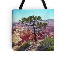 Canyon View Tote Bag