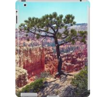Canyon View iPad Case/Skin