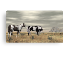 Lauri's Wild Horses Canvas Print