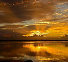 Golden Day. (sunrise ) by Julie  White