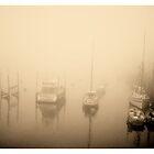 The Disappearing Fleet by Shirin Hodgson-Watt