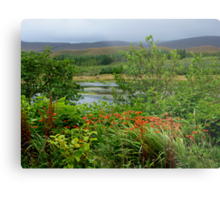 A Little Corner Of Ireland For St Patrick's Day Metal Print