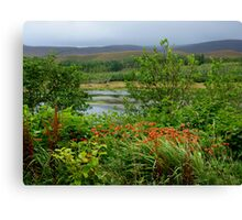 A Little Corner Of Ireland For St Patrick's Day Canvas Print