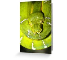 Green Before All Else Greeting Card