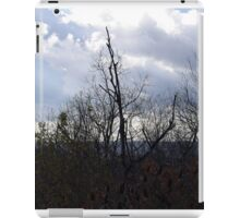 clouds and trees iPad Case/Skin