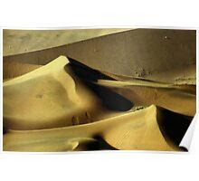 Golden Dunes, Namibia Poster