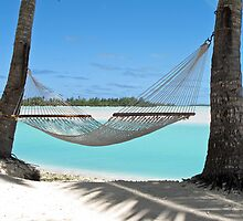 hammock by Anne Scantlebury