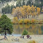 Ranch Pond in Autumn by Robert Meyers-Lussier