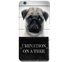 Pug Getting Arrested? iPhone Case/Skin