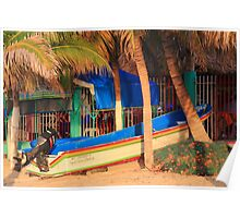 Panga boat and fishing net under the palm trees Poster