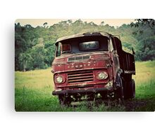The Ol' Girl Canvas Print