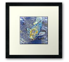 Something's a little Fishy Framed Print