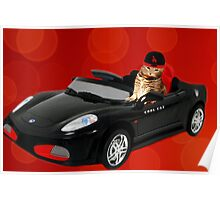 ☁ ☂  COOL CAT IN HIS COOL CAR ☁ ☂   Poster