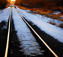 On the Right Track by Roxanne Persson