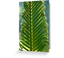 Cycad Fronds Unfurling Greeting Card