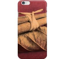 Autumn Spice iPhone Case/Skin