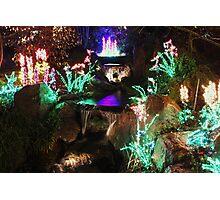 Garden of Lights Photographic Print