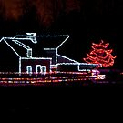 Festival of Lights by Tracey  Dryka