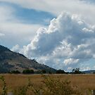 More Clouds by DEB CAMERON